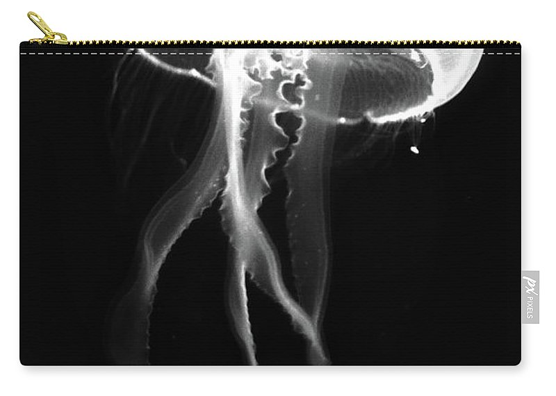 Jelly Fish Carry-all Pouch featuring the photograph Black Jelly by David Stasiak