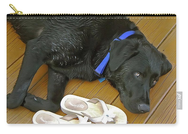 2d Carry-all Pouch featuring the photograph Black Lab Resting by Brian Wallace
