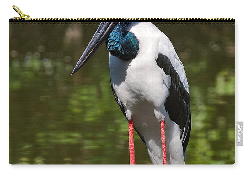 Birds Carry-all Pouch featuring the photograph Black-necked Stork by Louise Heusinkveld