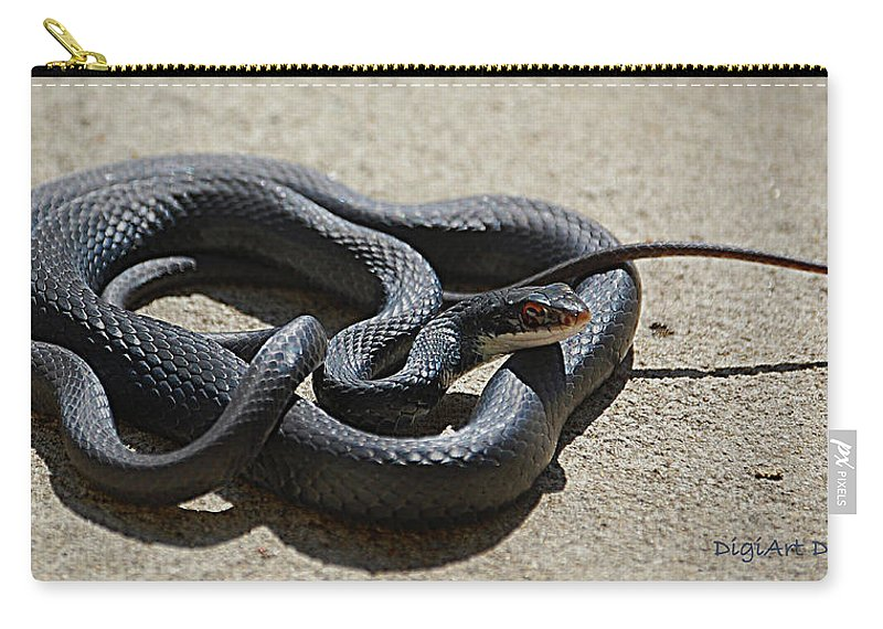Snake Carry-all Pouch featuring the digital art Black Racer by DigiArt Diaries by Vicky B Fuller