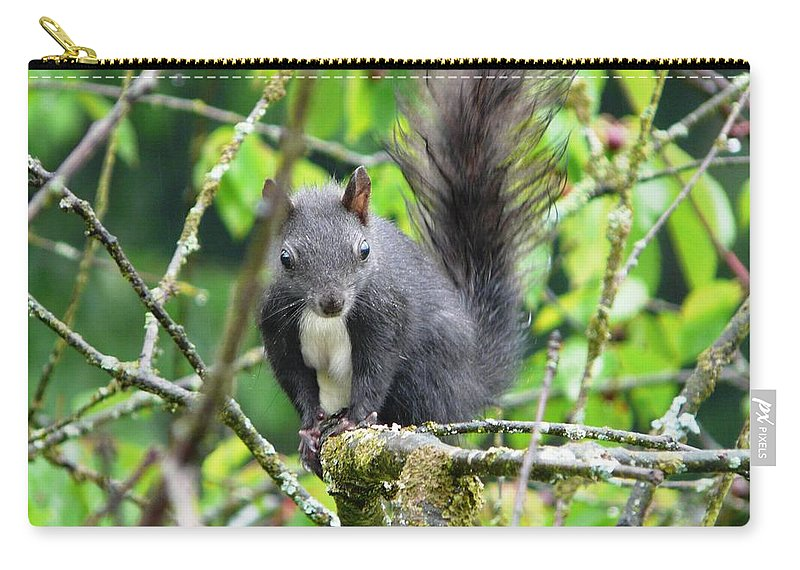 Animal Carry-all Pouch featuring the photograph Black Squirrel In The Cherry Tree by Valerie Ornstein