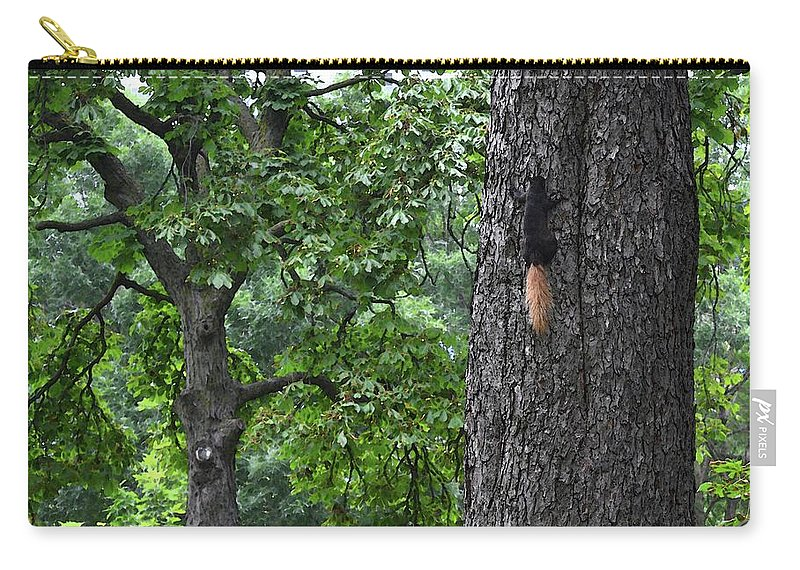 Abstract Carry-all Pouch featuring the digital art Black Squirrel With Blond Tail by Lyle Crump