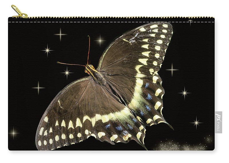 Butterflies Carry-all Pouch featuring the photograph Black Swallowtail On Black by Joni Eskridge