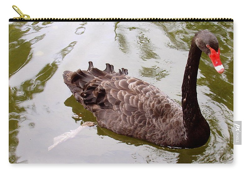 Black Carry-all Pouch featuring the photograph Black Swan Poised by Deborah Crew-Johnson