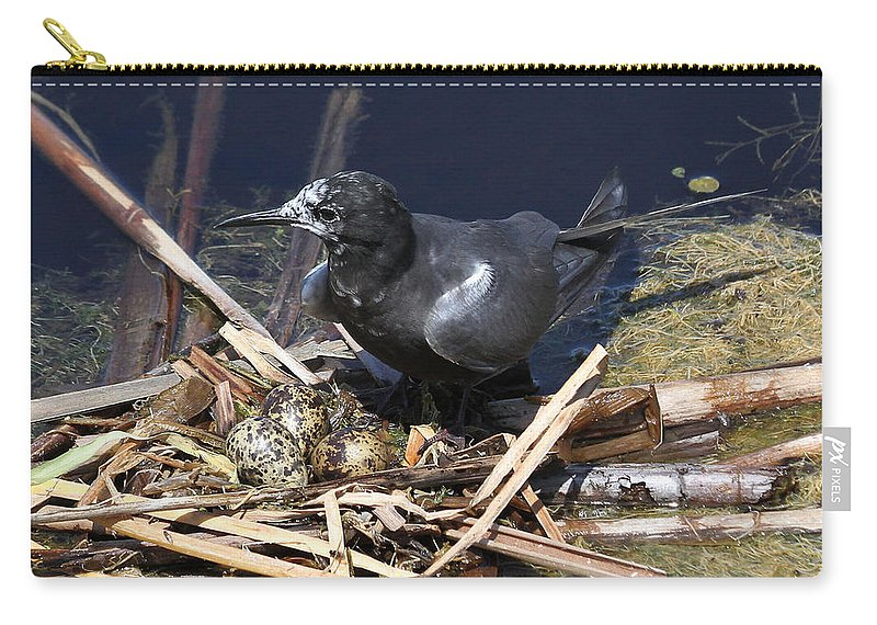 Black Tern Carry-all Pouch featuring the photograph Black Tern On Nest by Doris Potter