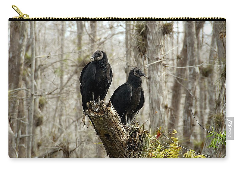 Black Vultures Carry-all Pouch featuring the photograph Black vultures by David Lee Thompson