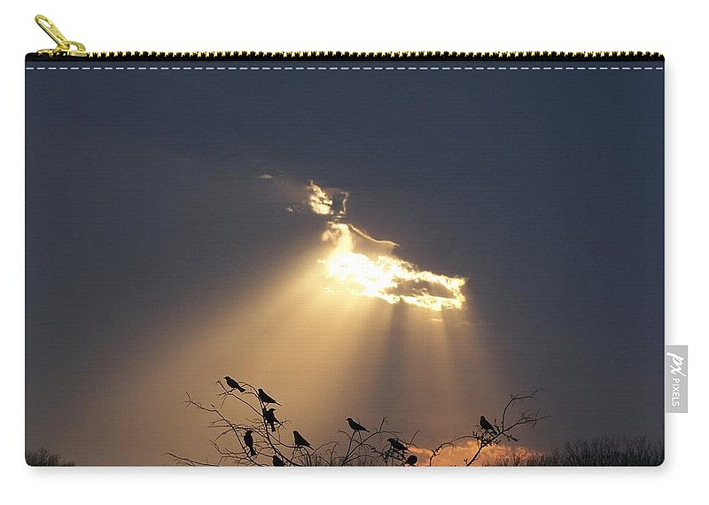 Storm Carry-all Pouch featuring the photograph Blackbird Sky by Gale Cochran-Smith