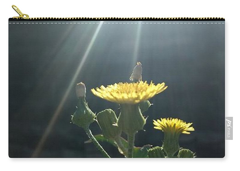 Landscapes Carry-all Pouch featuring the photograph Blessing by Nebha Jog