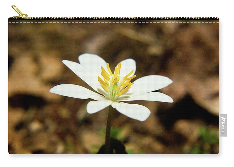 Sanguinaria Carry-all Pouch featuring the photograph Bloodroot 2 by Douglas Barnett
