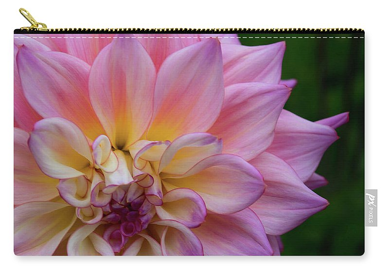 Carry-all Pouch featuring the photograph Bloom by Jade Woods