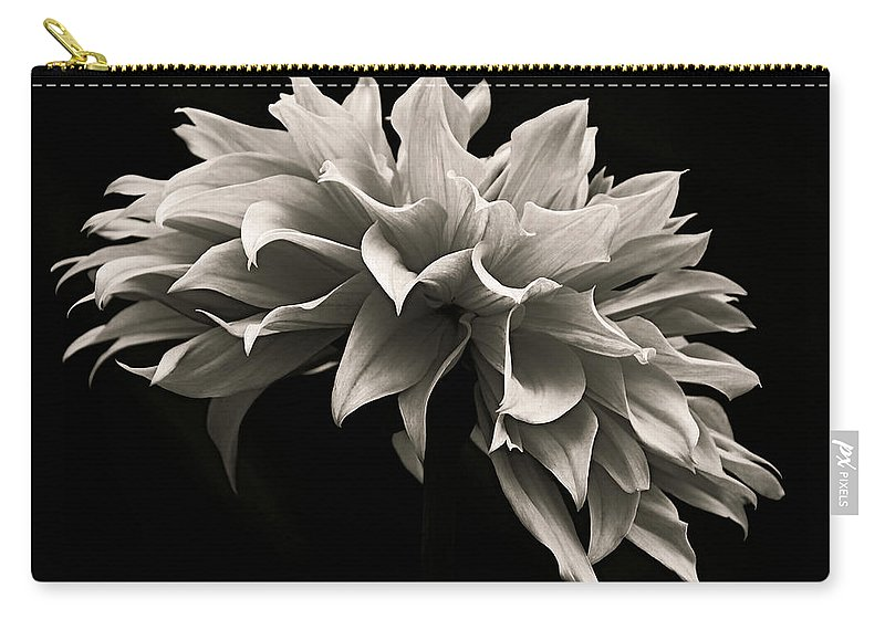 Dahlia Carry-all Pouch featuring the photograph Blooming II by Prairie Pics Photography