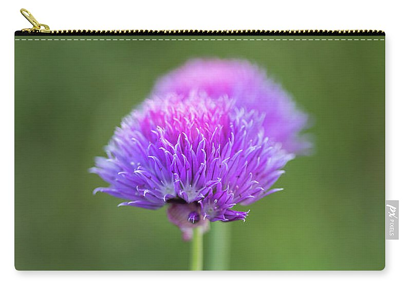 Blooming Onion Chives Carry-all Pouch featuring the photograph Blooming Onion Chives by Yana Reint
