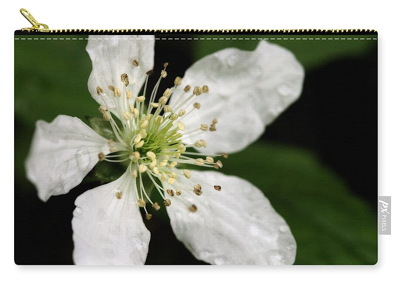 Flower Carry-all Pouch featuring the photograph Blossom by Angela Rath