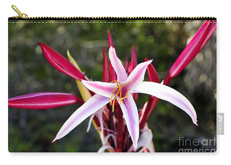 Blossom Carry-all Pouch featuring the photograph Blossoming Beauty by David Lee Thompson