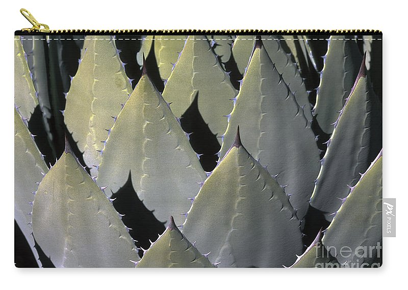 Cactus Carry-all Pouch featuring the photograph Blue Agave Cactus by Sandra Bronstein