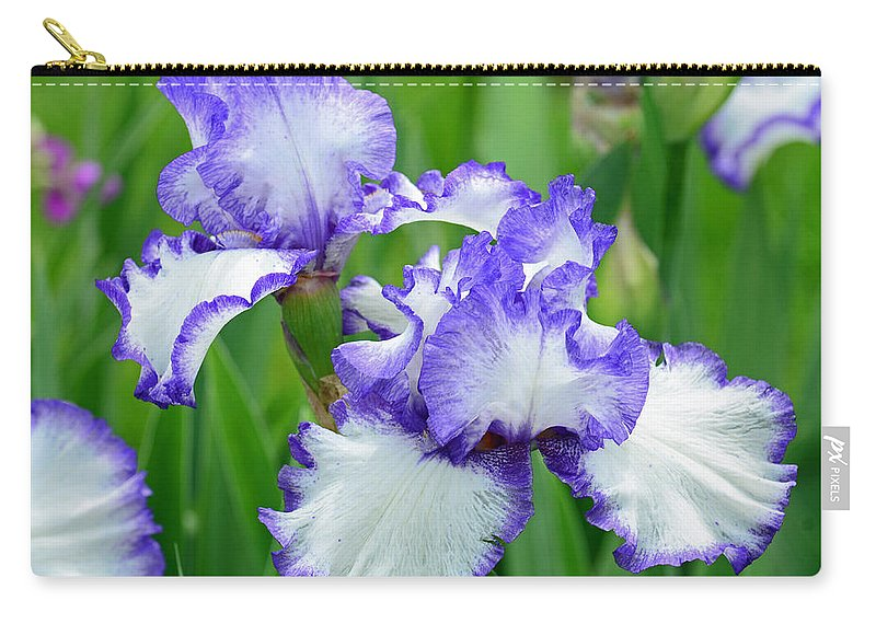Iris Carry-all Pouch featuring the photograph Blue And White Iris by Rodney Campbell