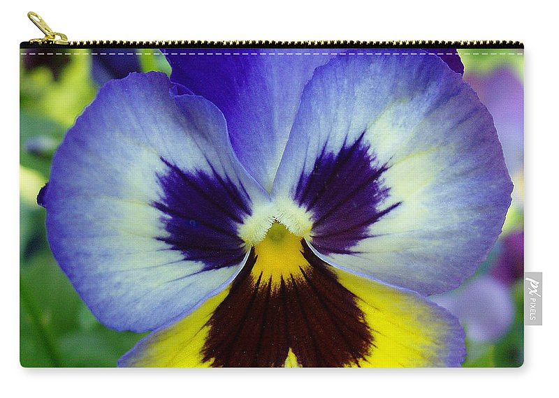 Flowers Carry-all Pouch featuring the photograph Blue And Yellow Pansy by Nancy Mueller