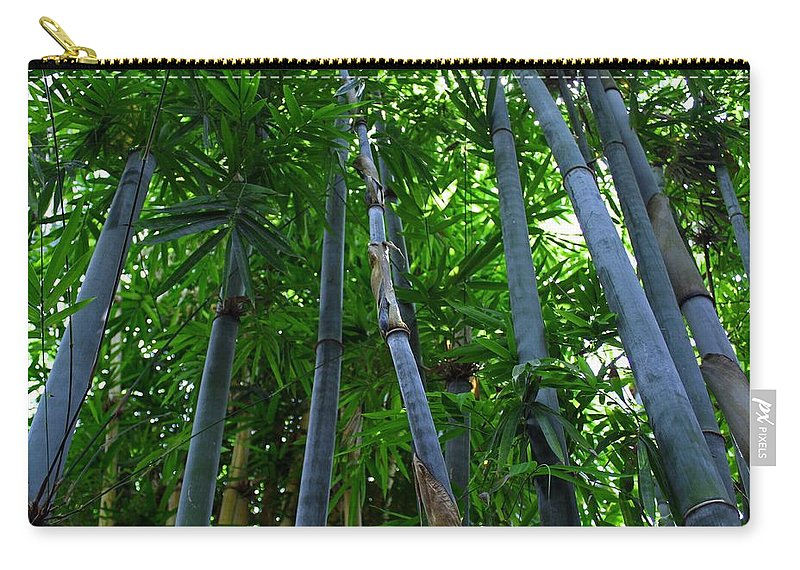 Blue Carry-all Pouch featuring the photograph Blue Bamboo by Michiale Schneider