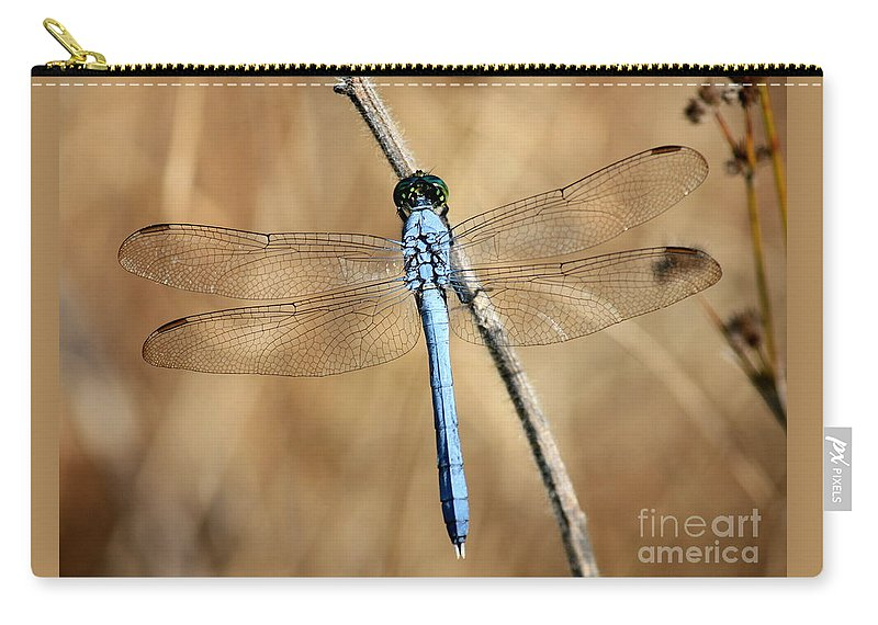 Dragonfly Carry-all Pouch featuring the photograph Blue Beauty by Carol Groenen