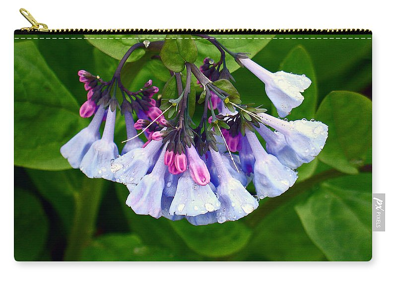Native Landscape Carry-all Pouch featuring the photograph Blue Bells by Steve Karol