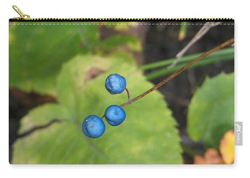 Blue Carry-all Pouch featuring the photograph Blue Berries by Kelly Mezzapelle