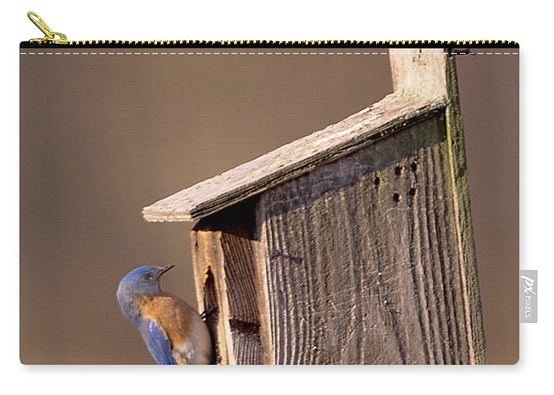 Bird Carry-all Pouch featuring the photograph Blue Bird Couple by John Harmon