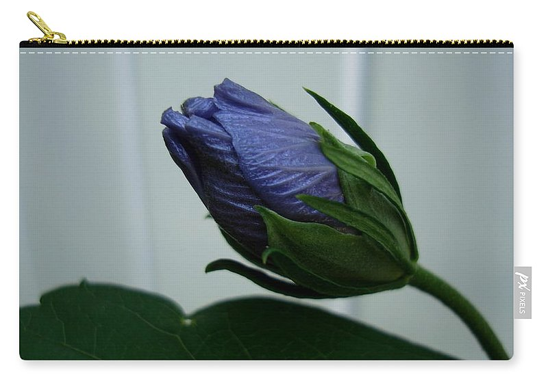 Rose-of-sharon Carry-all Pouch featuring the photograph Blue Bud by Michiale Schneider