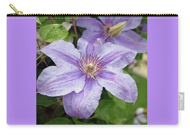 Clematis Carry-all Pouch featuring the photograph Blue Clematis by Margie Wildblood