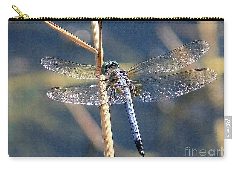 Dragonfly Carry-all Pouch featuring the photograph Blue Dragonfly by Carol Groenen