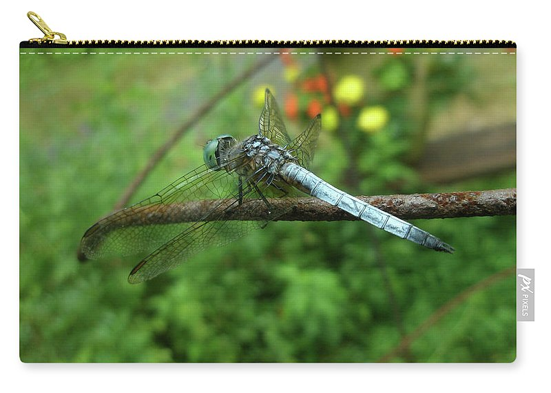 Dragonfly Carry-all Pouch featuring the photograph Blue Dragonfly by Mother Nature