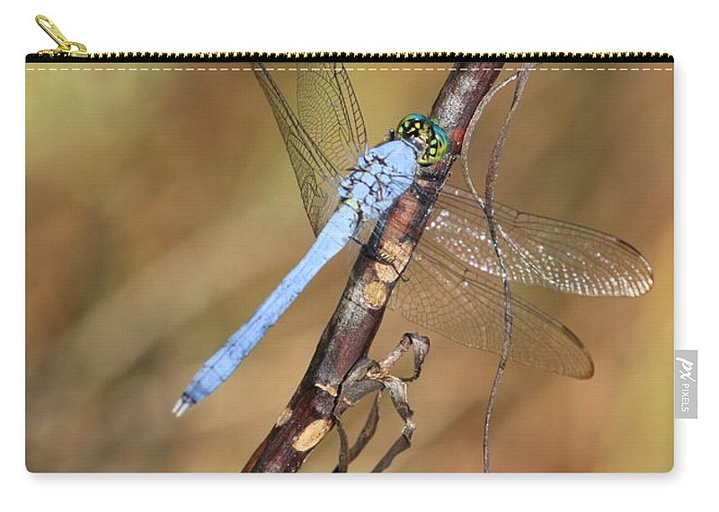 Dragonflies Carry-all Pouch featuring the photograph Blue Dragonfly Portrait by Carol Groenen
