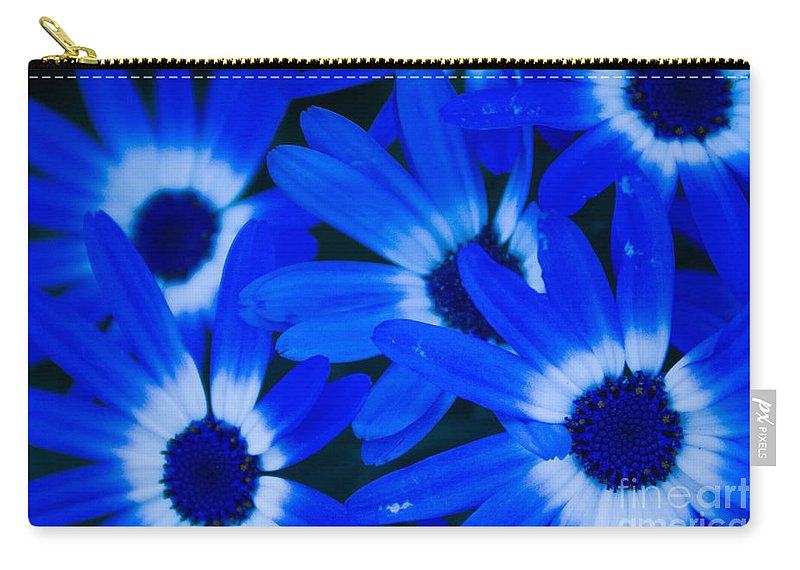Blue Eye Flower Carry-all Pouch featuring the photograph Blue Daisies, Medford Oregon by Tirza Roring