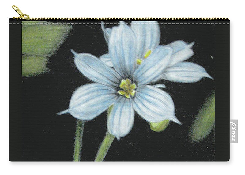 Fuqua - Artwork Carry-all Pouch featuring the drawing Blue Eyed Grass - 2 by Beverly Fuqua