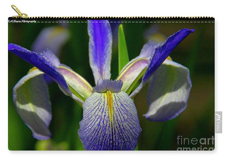Blue Flag Iris Carry-all Pouch featuring the photograph Blue Flag Iris by Barbara Bowen
