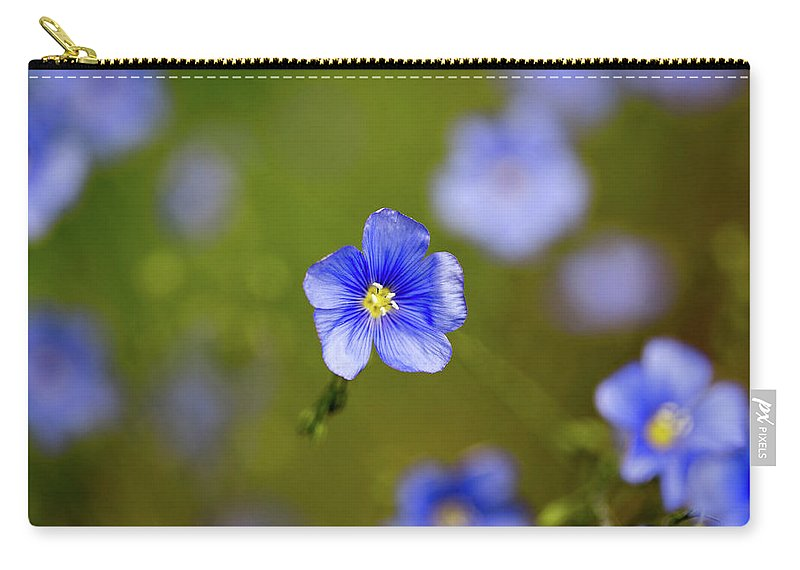 Crested Butte Carry-all Pouch featuring the photograph Blue Flax #4 by Meagan Watson