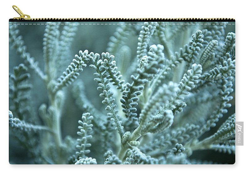 Macro Carry-all Pouch featuring the photograph Blue Grass by Svetlana Sewell