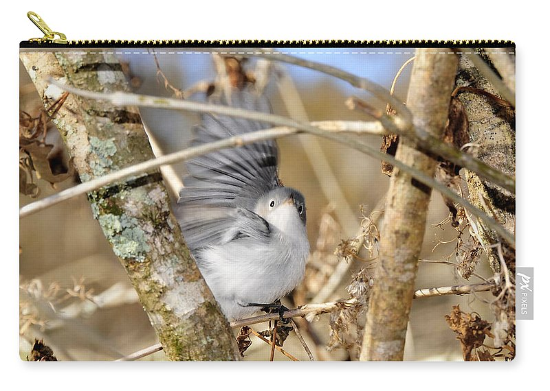 Warbler Carry-all Pouch featuring the photograph Blue Gray Gnatcatcher by David Lee Thompson