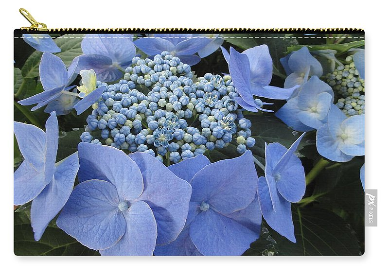 Flower Carry-all Pouch featuring the photograph Blue Hydrangea Buds by Alexander Kuzimski