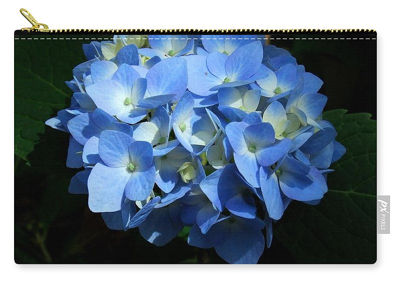 Hydrangea Carry-all Pouch featuring the photograph Blue Hydrangea II by Michiale Schneider