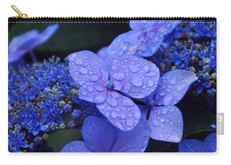 Flowers Carry-all Pouch featuring the photograph Blue Hydrangea by Noah Cole