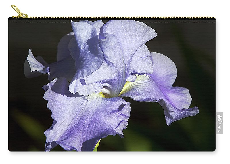 Flower Carry-all Pouch featuring the photograph Blue Iris by Phyllis Denton