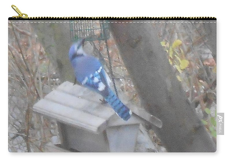 Blue Jay Carry-all Pouch featuring the photograph Blue Jay by Darlene Custer