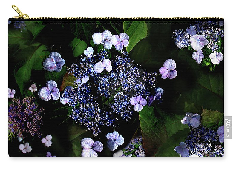 Lace Cap Hydrangea Carry-all Pouch featuring the photograph Blue Lace by Steve Karol