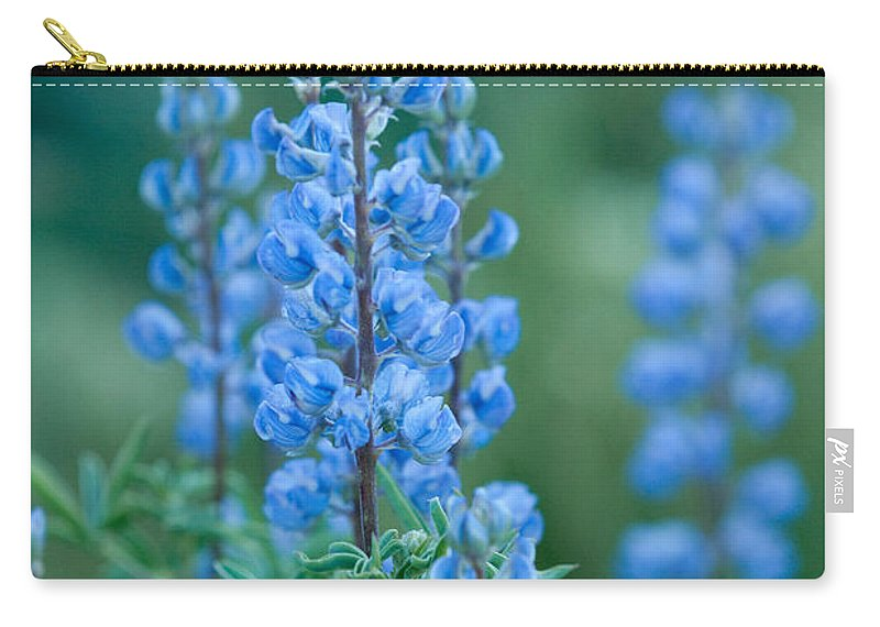 Grand Teton Carry-all Pouch featuring the photograph Blue Lupine In The Tetons by Sandra Bronstein