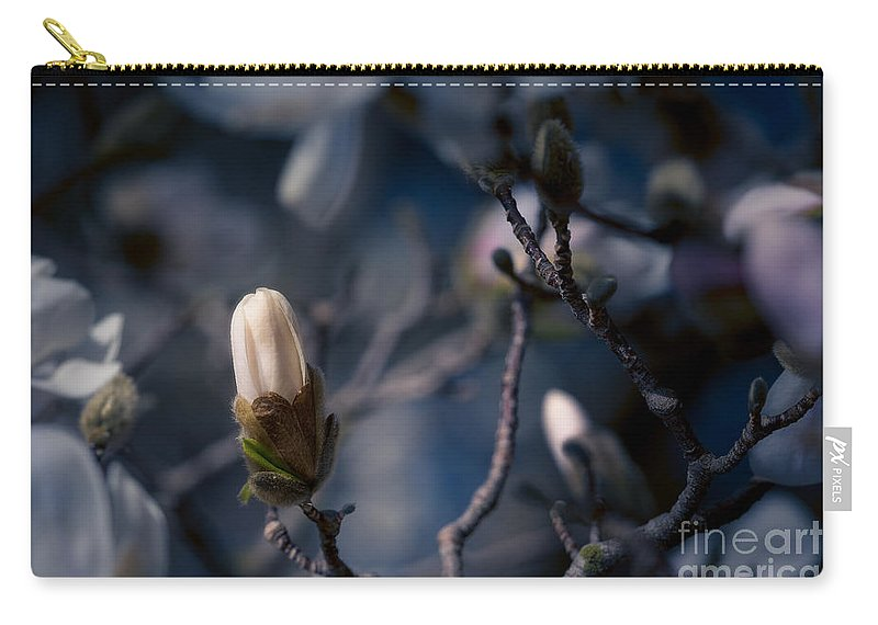 Bloom Carry-all Pouch featuring the photograph Blue Magnolia by Joe Mamer