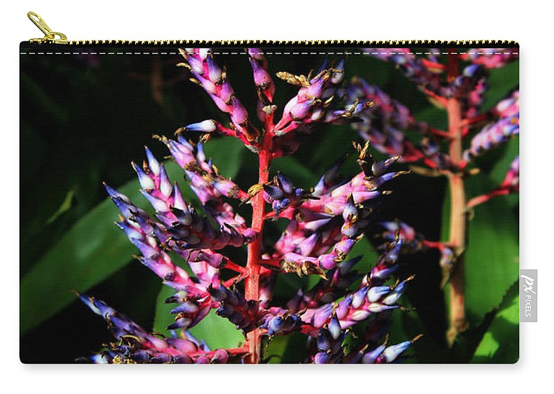 Blue Rain Bromeliad Carry-all Pouch featuring the photograph Blue Rain Bromeliad by Denise Irving