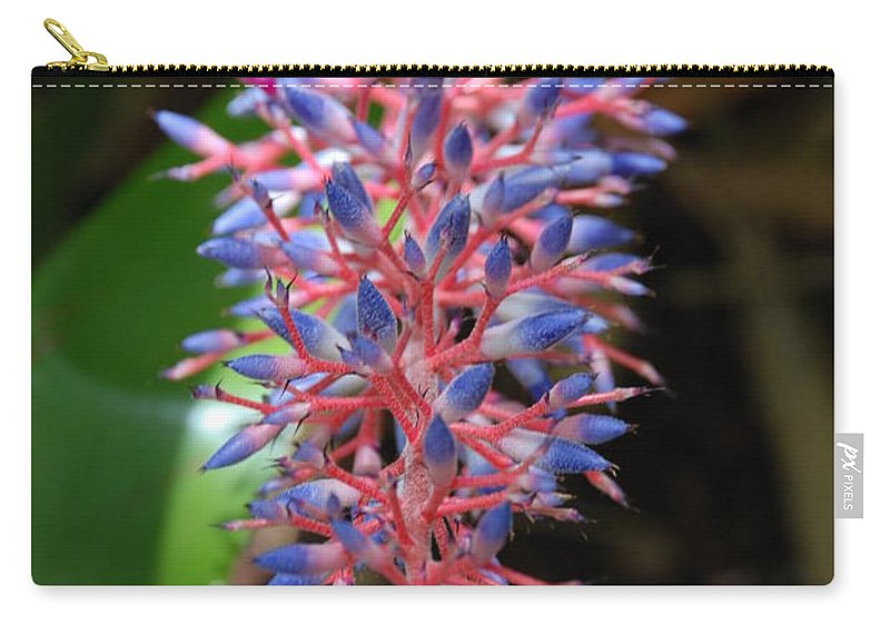 Red Carry-all Pouch featuring the photograph Blue Red Plant by Rob Hans