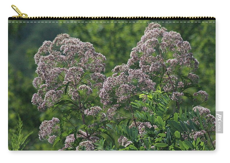 Flowers Carry-all Pouch featuring the photograph Blue Ridge Flowers by Tina Foote
