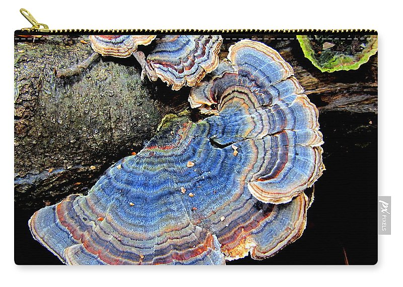 Blue Turketail Fungi Carry-all Pouch featuring the photograph Blue Turkeytail Fungi by Joshua Bales