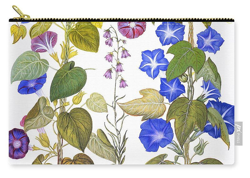 1613 Carry-all Pouch featuring the photograph Bluebell And Morning Glory by Granger